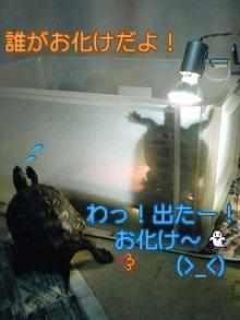 北海熊の独り言-100211_0116~01001.jpg