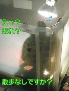 北海熊の独り言-100211_0112~01001.jpg