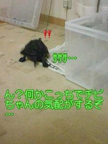 北海熊の独り言-100807_2320~01.jpg
