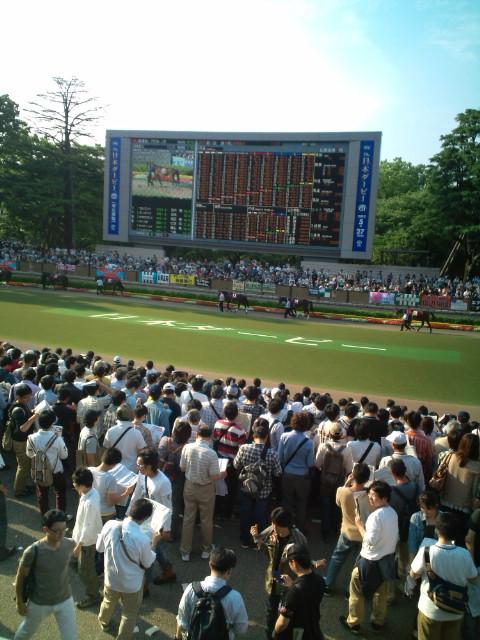 Derby2012-Meguro-kinen-pudock.jpg