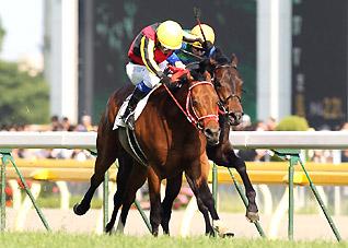 Derby2012.jpg