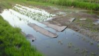 福島県広野町海岸線沿い④~田んぼに流失したアスファルト破片~