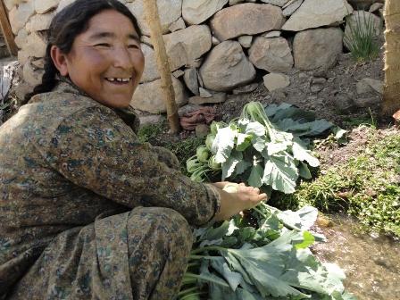 野菜を洗うおばさん