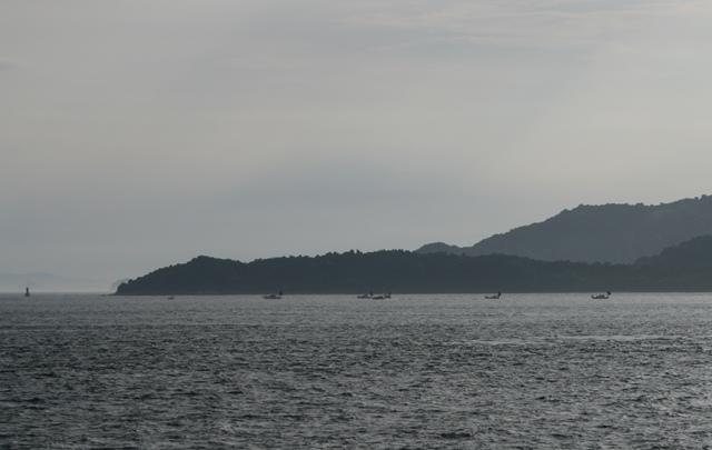 IMG_1135 漁船 W