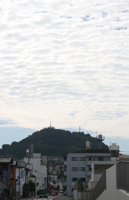 IMG_2685 黄金山秋天 W