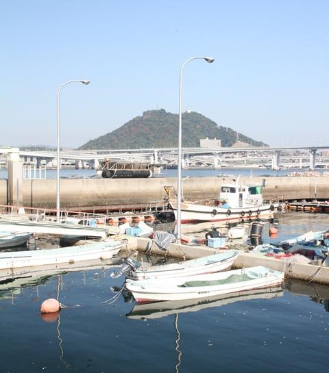 IMG_2797 漁港から見る黄金山