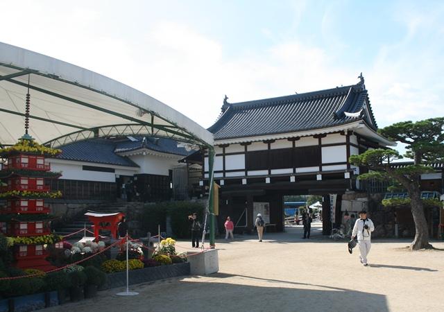 IMG_2898 広島城菊まつり W