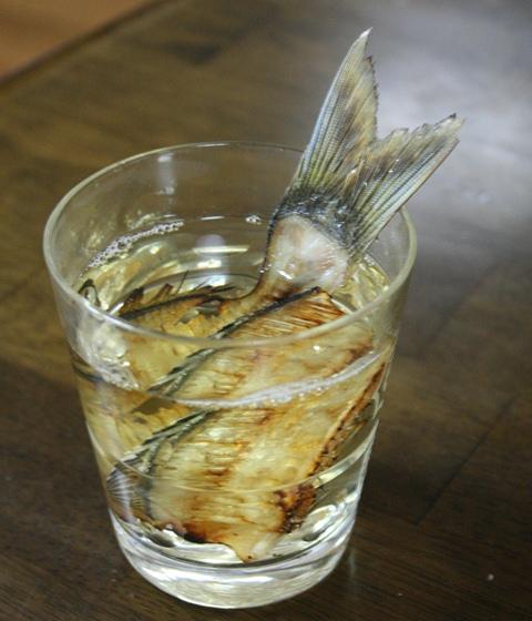 IMG_3030 骨酒 ウミタナゴ W