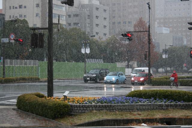 IMG_3336 平和大通りに雪 W