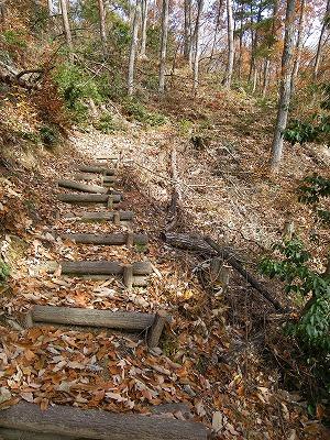 秋の散歩1