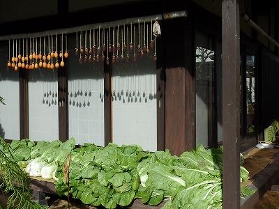 干し柿と白菜