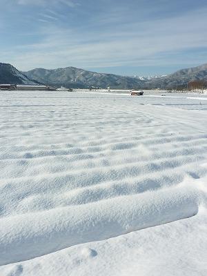 雪かぶる田畑