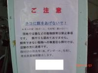 kinshikanban