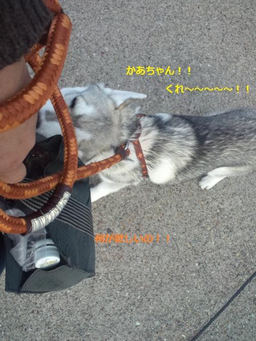 縺・◆縺壹i・点convert_20120417205547