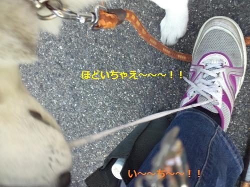 縺・◆縺壹i・廟convert_20120417210059