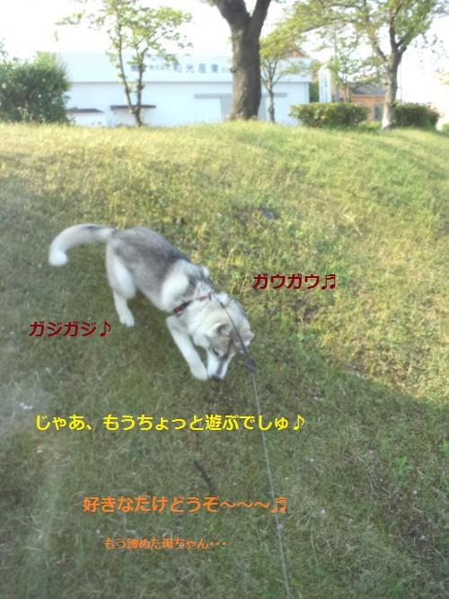 DCF00000047_convert_20120426122056.jpg