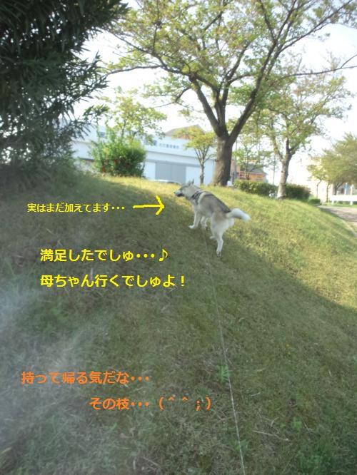 DCF00000050_convert_20120426122816.jpg