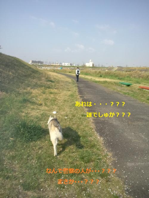 DCF000014_convert_20120419220901.jpg