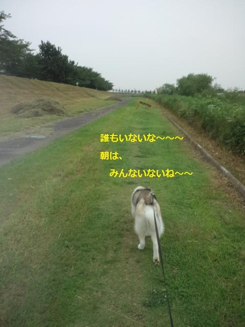 DCF204_convert_20120723224710.jpg