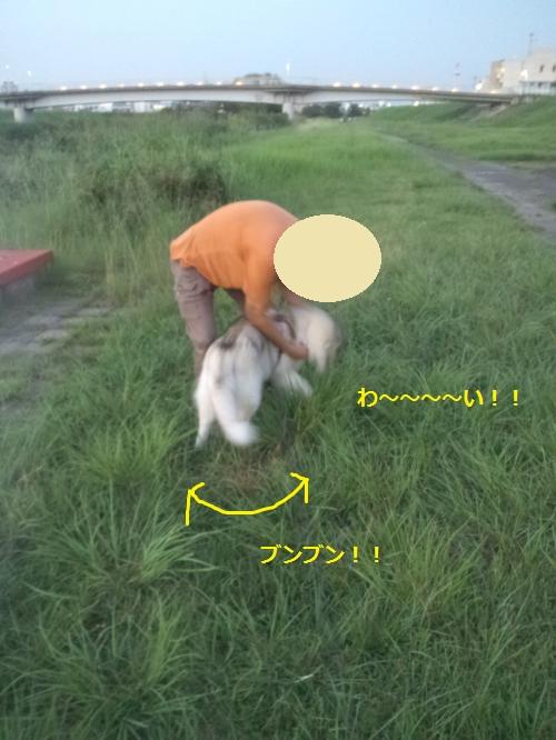 DCF251_convert_20120913193852.jpg