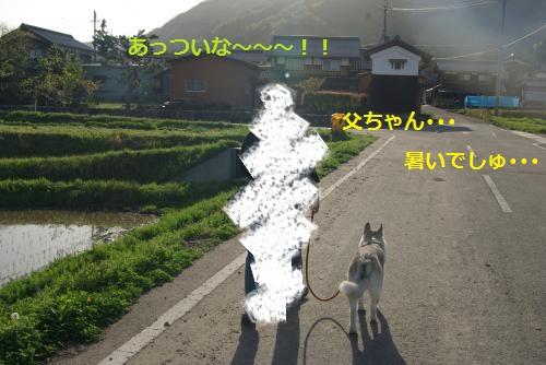 IMGP3082_convert_20120430232032.jpg