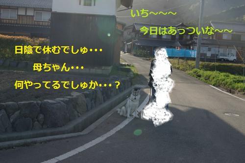 IMGP3084_convert_20120430232235.jpg
