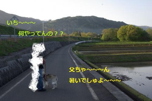IMGP3086_convert_20120430232343.jpg