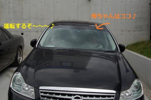 IMGP3239_convert_20120610141538.jpg