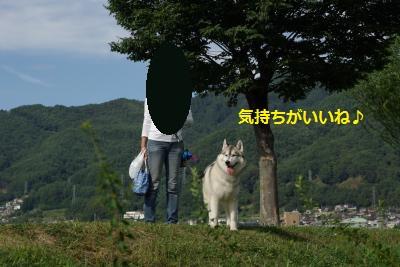 IMGP6941_convert_20140930153313.jpg