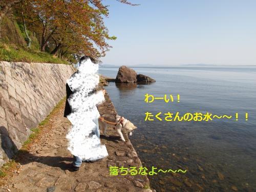 P4282477_convert_20120430143922.jpg