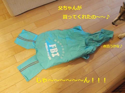 P6300713_convert_20120711201035.jpg