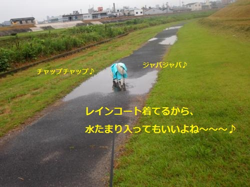 P7030817_convert_20120712212812.jpg