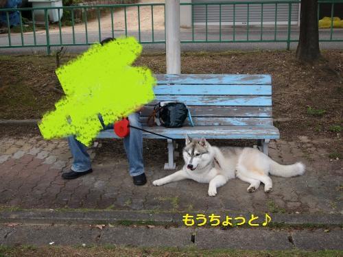 P7160048_convert_20120726140651.jpg