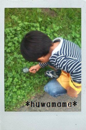 FxCam_1288502047913huwamamassize.jpg