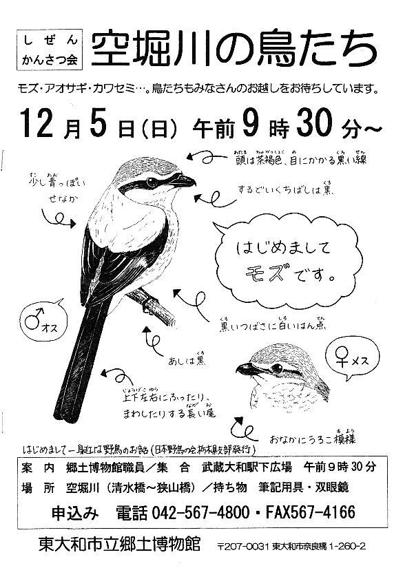 20101206-1.jpg