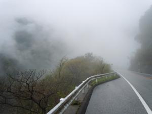 濃霧の中をひた走る