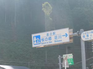 桜の郷・荘川