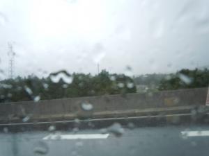 雨脚はかなり強かった