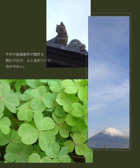 201205.jpg