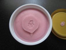 ブオノトロピカルフルーツソルベザクロ