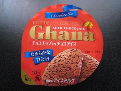 ガーナチョコチップinチョコアイス