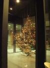 hi-snow-christmastree.jpg