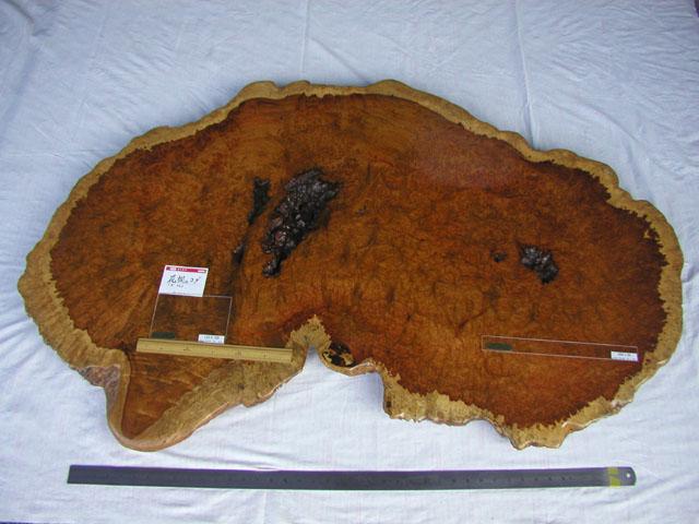 No.5905 材料 花櫚コブ 天板向け 自然 木裏(約135×75×6cm)