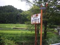 七山 (13)