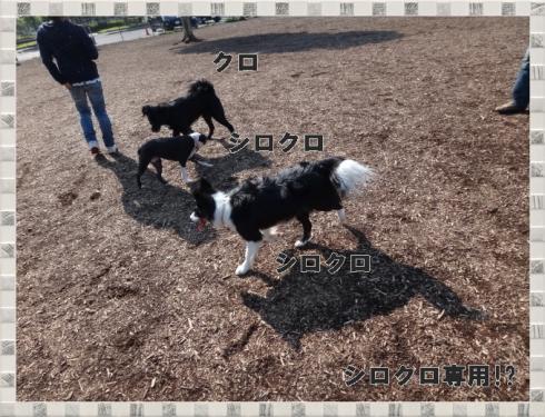 2012_0518_154110-DSC03447.jpg