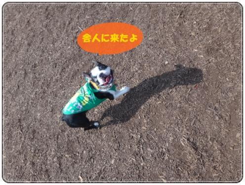 2012_0603_151854-DSC03534.jpg