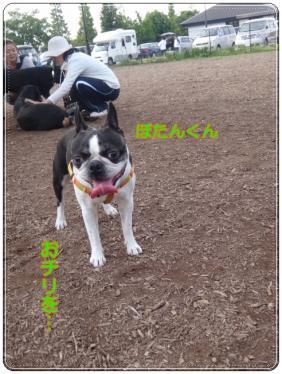 2012_0603_155421-DSC03546.jpg
