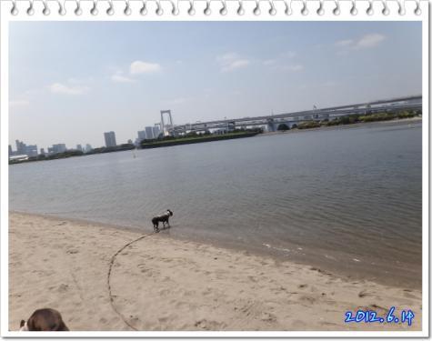 2012_0614_133827-DSC03695.jpg