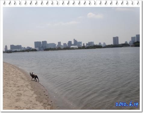 2012_0614_133904-DSC03699.jpg