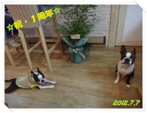 2012_0707_184350-DSC03795.jpg